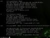 Linux-OpenVPN04